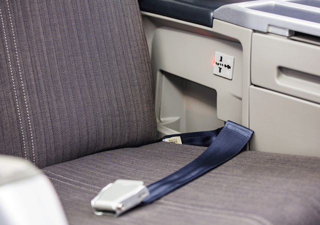 Airbus 318 Specialty 32 seat