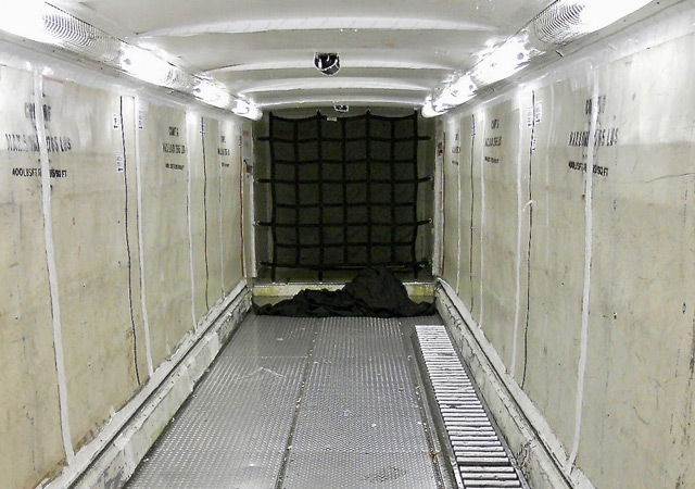 Shorts 360 cargo